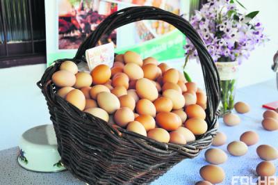 Agroindústrias: qualificação para expandir mercados